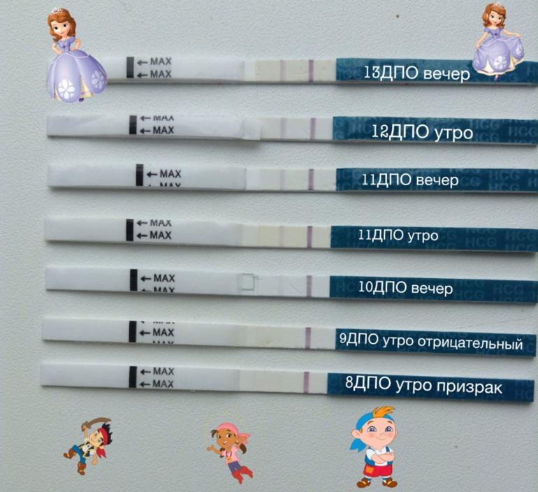 На каком сроке тест может уже показать беременность  на