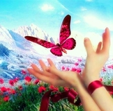 http://062013.imgbb.ru/community/2/23127/157e0bd87dd213b2a6213ec2ab065900.jpg