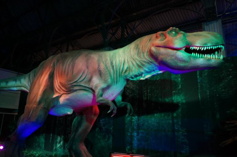 Посетили выставку динозавров...