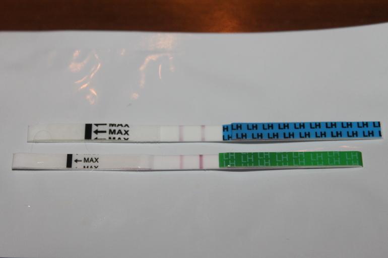 Тесты на овуляцию фото при беременности