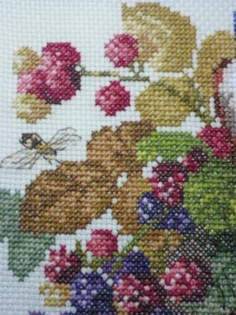 Птицы,пчёлы и ежевика