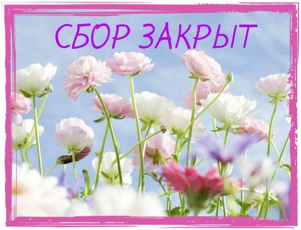 49a213b66c241208fc6e467259db4e02.jpg