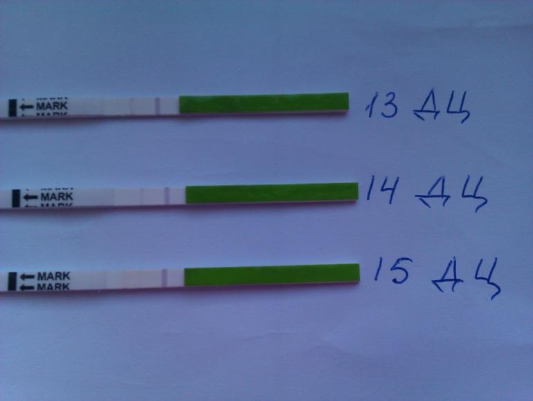 Беременность и эндометрий 7 мм