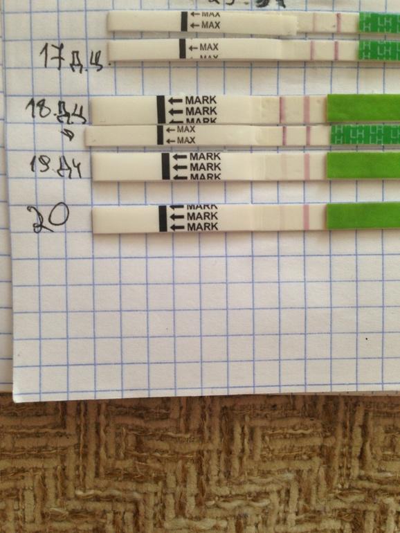 Тест на беременность на следующий день после зачатия