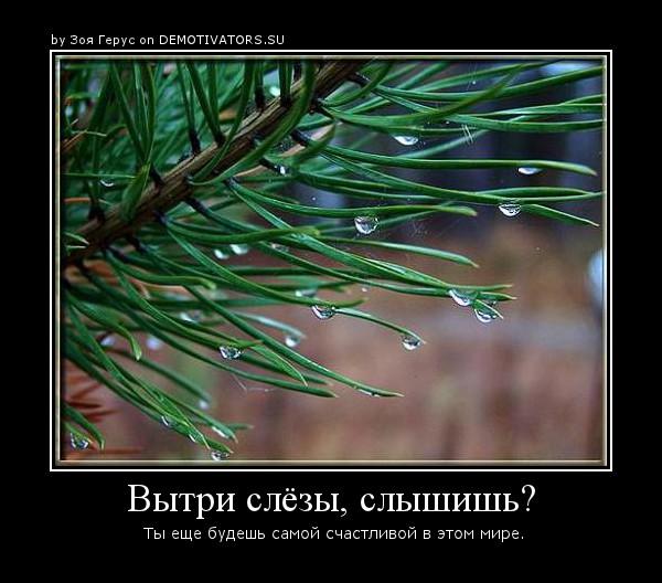14c0ec5a9aae9b3664004c3c0c1cffb4.jpg