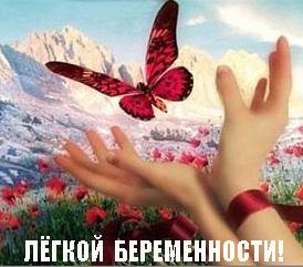 f36d1320632159712ff32e70e788fb74.jpg