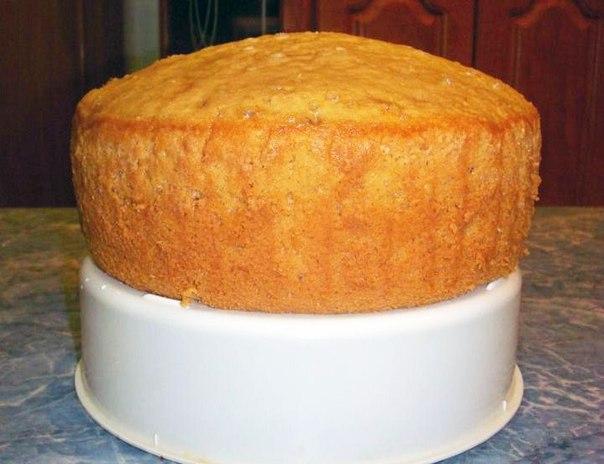 плотный бисквит рецепт для карвинга