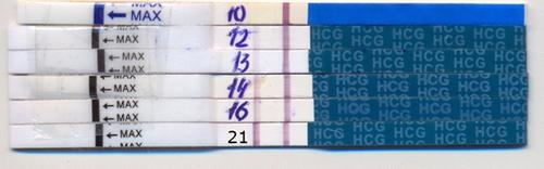 Радоница 9-тый день от пасхи родительский день урюпинск урюпинский район 10 м repeat радоница 9-тый день от пасхи