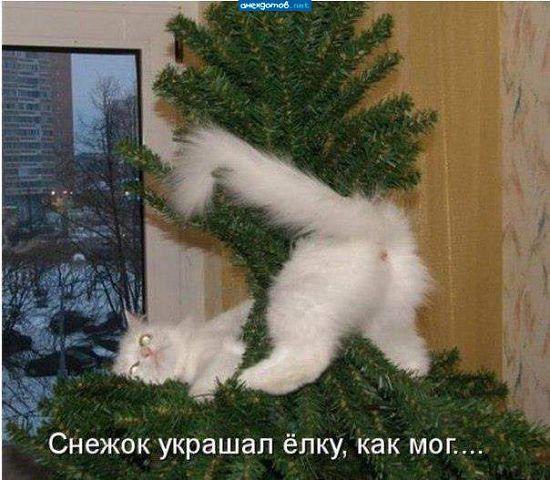 Когда работать лень, мне всегда весело)))