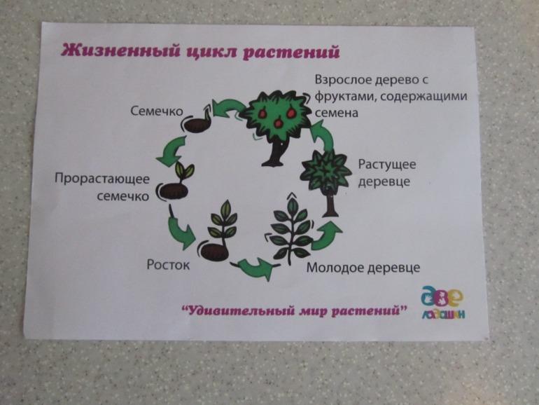 Сперма в ладонь 16 фотография