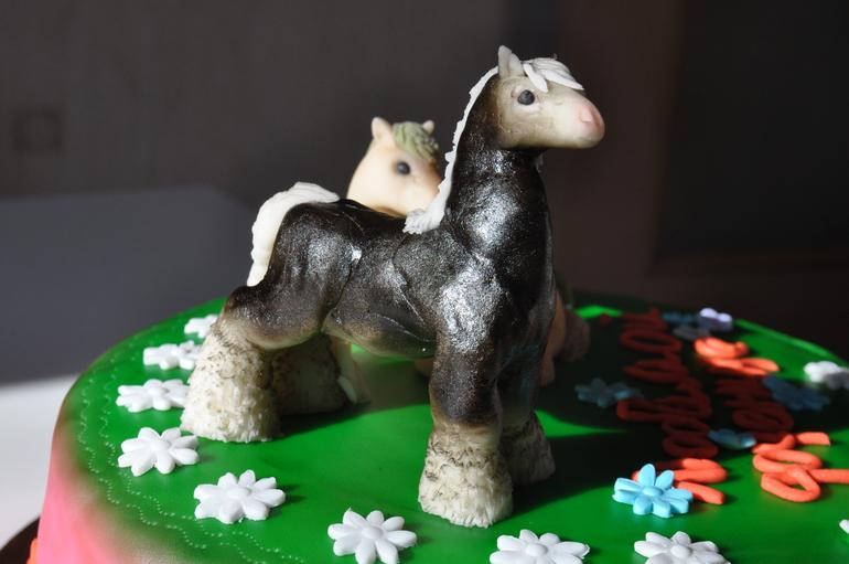 Торт на заказ с животными фото 9